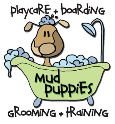 Dog Grooming South Austin